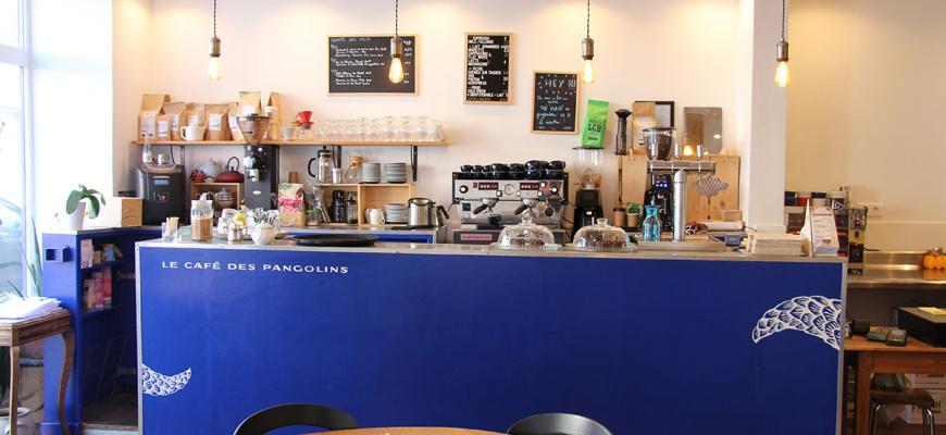 Le Café des pangolins Cosy