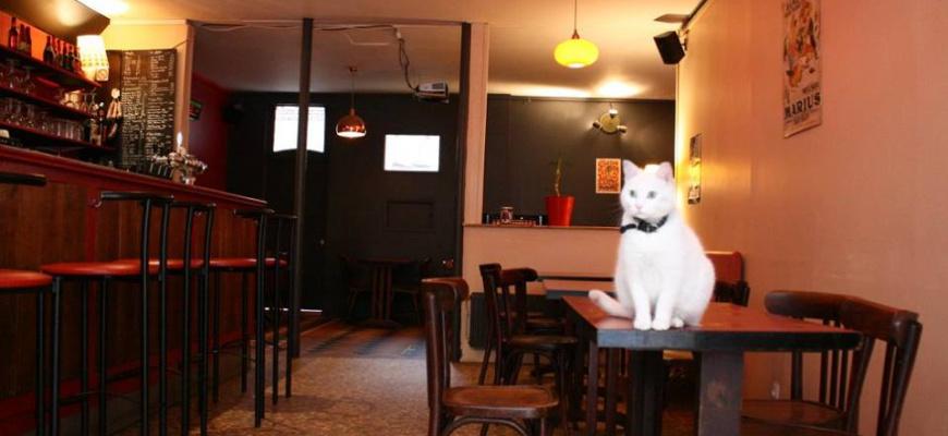 Café de la Ribine Bistrot de quartier