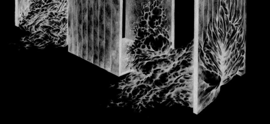 Le sol qui se soumet au vent, prospère - Jezy Knez Art contemporain