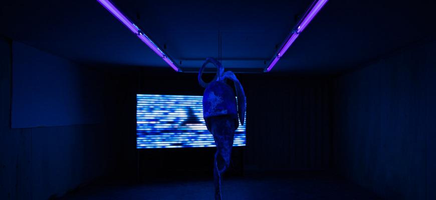 Inter_ Art contemporain
