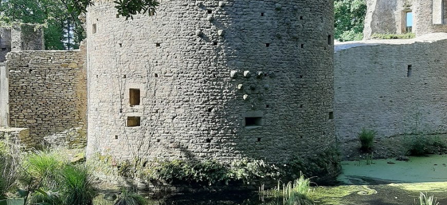 La construction d'un château-fort Animation