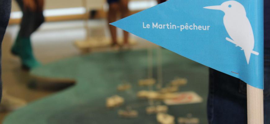 Atelier 4/6 ans : Qui es-tu, martin-pêcheur ?  Atelier/Stage