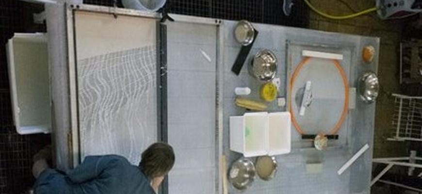 Atelier le papier dans tous ses états Atelier/Stage