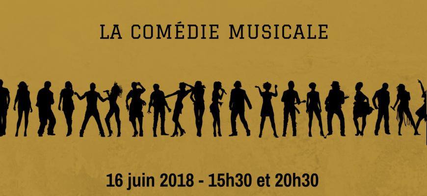 A tour de rôle Spectacle musical/Revue