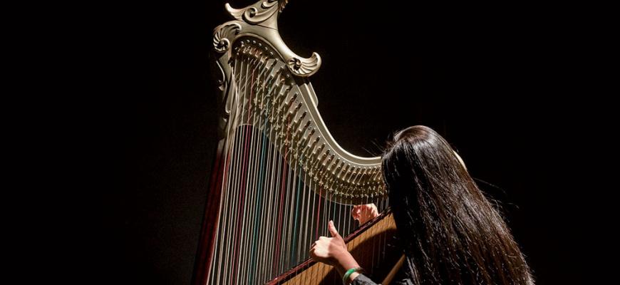 Harpes au max Musique traditionnelle
