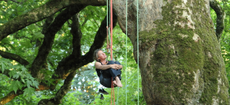 Haziel et les arbres Théâtre