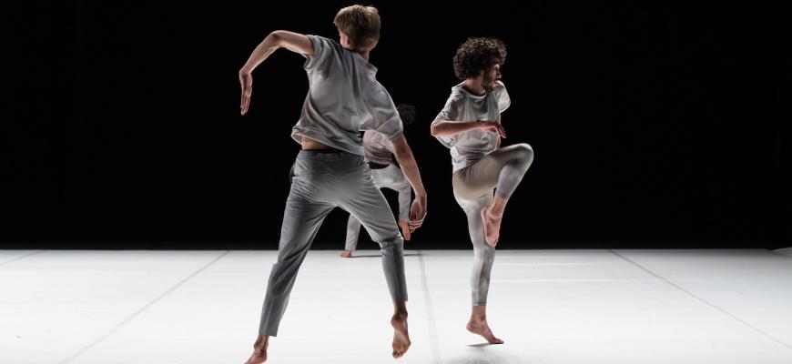 Twenty seven perspectives Danse