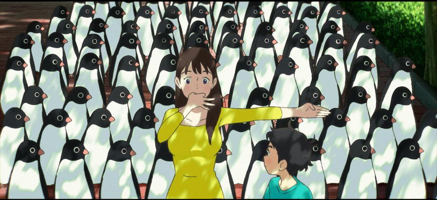 Le Mystère des pingouins Animation