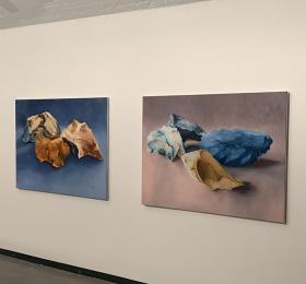 Image Du caillou à l'iguane, Patricia Cartereau & Xavier Navatte Art contemporain