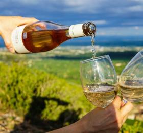 Soirée œnologique - les vins natures