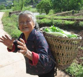 Découverte de l'agriculture en Chine avec zoom sur ses productions végétales spécialisées, en particulier légumières - Jacky BRECHET