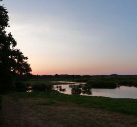 Image À l'aube du lac de Grand-Lieu Visites et sorties