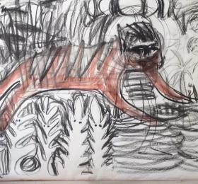 Image Je suis Tigre - Festival Nijinskid Danse