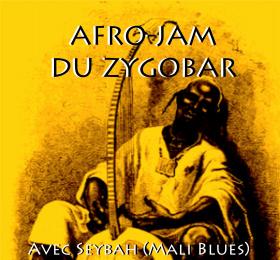 Image Jam Afro Mandingue avec Seybah et Mali Blues + invités  Musique du monde