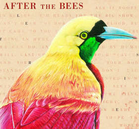 After The Bees