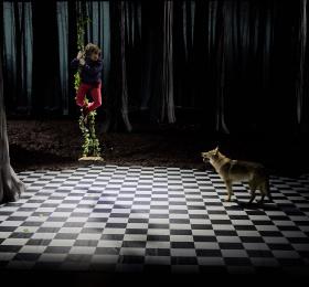 Image Le Bruit des loups Théâtre