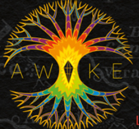 """The roots ark - """"Awake"""" - release party + Moja"""