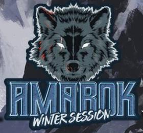 Image Amarok Winter Session Métal