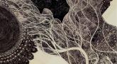 Anaïs Echeynne - À la pointe du Kalam
